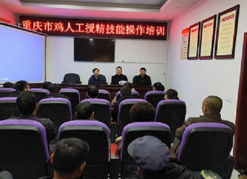 重庆市畜牧业协会禽业分会成功开展重庆市鸡人工授精技能操作培训
