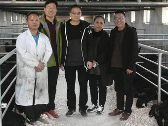 重庆市畜牧业协会专家与山东畜牧专家到酉阳联合开展鲁渝扶贫协作山羊产业技术指导