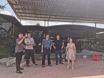 市畜牧业协会到合川区开展肉牛养殖技术指导